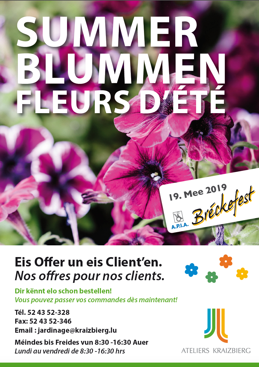 summerblummen flyer01